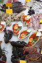 Free Seafood In Shop Royalty Free Stock Photo - 8632795