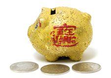 Free Piggy Bank Stock Image - 8630781