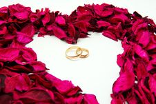 Free Wedding Rings In Red Rose Petals Stock Photos - 8635323