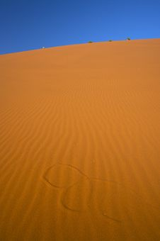 Free Desert Dunes With Blue Sky Stock Images - 8638484