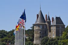 Chateau And Flags Stock Photography