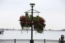Free Flowery Street Lamp Stock Image - 86300821