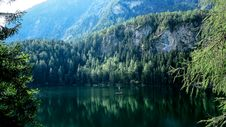 Free Pines Reflection Royalty Free Stock Image - 86301356