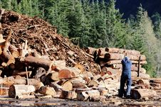 Free Lumberjack Stock Photo - 86303230