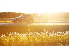 Free Sunny Road Trip Stock Photos - 86303293