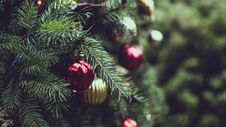 Free Christmas Tree Stock Images - 86353184