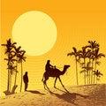 Free Sahara Desert And Camel Stock Image - 8648801