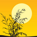 Free Plant Scenic Stock Image - 8649171