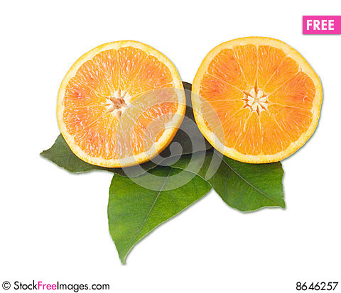 Free Oranges Royalty Free Stock Photography - 8646257