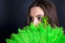 Free Green And Black Stock Images - 8640214