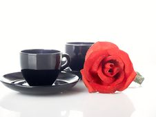 Free Rose And Cup Royalty Free Stock Photography - 8640297