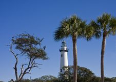 Free Lighthouse And Palm Trees Stock Photography - 8641312