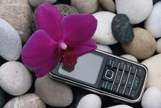 Free Mobile Phone Royalty Free Stock Photography - 8643317