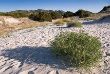 Sardinia Landscape Stock Images