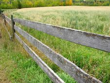Free Fence And Oat Field Stock Images - 8645294
