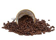 Free Coffee Beans Stock Photos - 8645433
