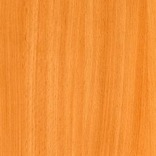 Free Close-up Wooden Beech Texture Royalty Free Stock Photo - 8645895