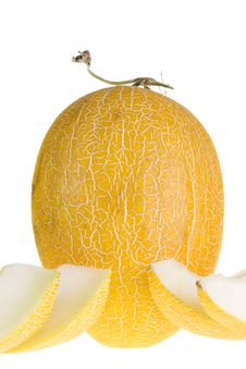Free Melon Isolated On White Royalty Free Stock Photo - 8646525