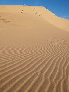 Free Desert Scene Stock Image - 8648481