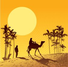 Free Sahara Desert And Camel Stock Image - 8648801