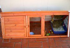 Free I Bought A Bunny Hutch! Royalty Free Stock Photo - 86468365