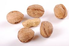 Free Nuts Stock Photography - 8650262