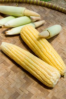 Corn On Bamboo Tray Royalty Free Stock Photography