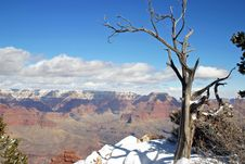Grand Canyon Winter Stock Image