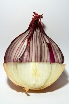 Free Double Colored Onion Stock Photography - 8654252