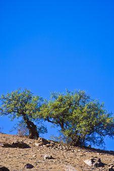 Free Morocco Stock Photo - 8655130