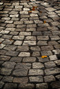 Free Aged Cobblestone Roadway Stock Images - 8660124