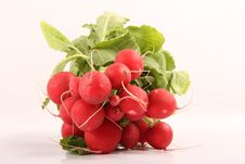 Free Radishes Stock Photo - 8660910