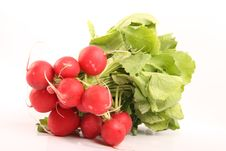 Free Radishes Royalty Free Stock Image - 8660926
