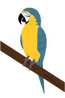 Free Macaw Parrot Royalty Free Stock Photography - 8661237