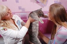 Free Two Women With Cat Stock Photography - 8661292