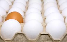 Free Eggs White And Brown Royalty Free Stock Photography - 8665137