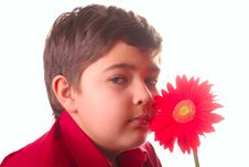 Free Teenager And Red Flower Royalty Free Stock Images - 8665269