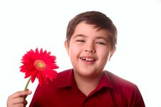 Free Teenager And Red Flower Royalty Free Stock Image - 8665276
