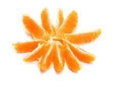 Free Mandarin Royalty Free Stock Photography - 8665867