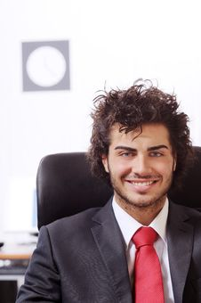 Free Businessman In The Office Stock Photos - 8667523