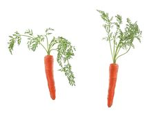 Free Two Carrots Isolated On White Royalty Free Stock Image - 8668816