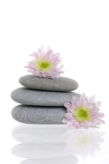 Free Spa Stones And Flower Stock Photo - 8669060