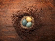 Free Eggs In A Nest Royalty Free Stock Photos - 8669248