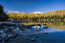 Free Lake And Forest Royalty Free Stock Image - 8669946