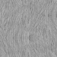 Free Fur_v02 Stock Image - 86687991