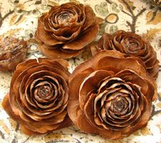 Free Pine Cone Roses 3 Stock Photography - 86690782