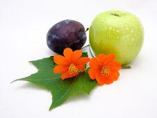 Free Flowers Plum Apple Stock Photos - 86690983