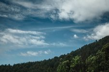 Free Green Forest And White And Blue Sky During Daytime Stock Images - 86693894