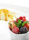Free Dessert - Fresh Berries With Ice Cream Royalty Free Stock Photography - 8675377