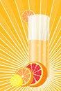 Free Citrus  Juice Royalty Free Stock Photo - 8676735